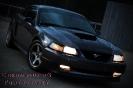 Stephani's 2003 Mustang DSG GT
