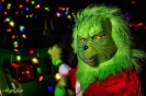Mojito Grinch Steals Christmas - JR Photon Photoshoot_2