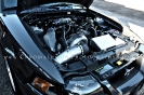 Stephanis 2003 Mustang DSG GT_12