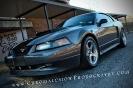 Stephanis 2003 Mustang DSG GT_15